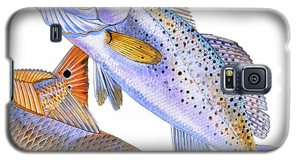 Redfish Trout Galaxy S5 Case by Carey Chen