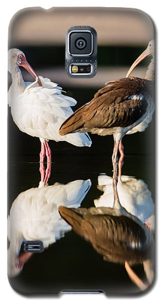 Bird Galaxy S5 Cases - Reflection of Two Young Ibis Galaxy S5 Case by Andres Leon
