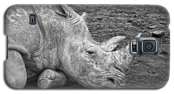 Rhinoceros Galaxy S5 Case by Nancy Aurand-Humpf
