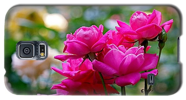 Rittenhouse Square Roses Galaxy S5 Case by Rona Black