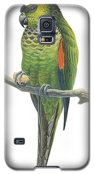 Rock Parakeet Galaxy S5 Case by Anonymous