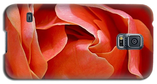 Rose Abstract Galaxy S5 Case by Rona Black