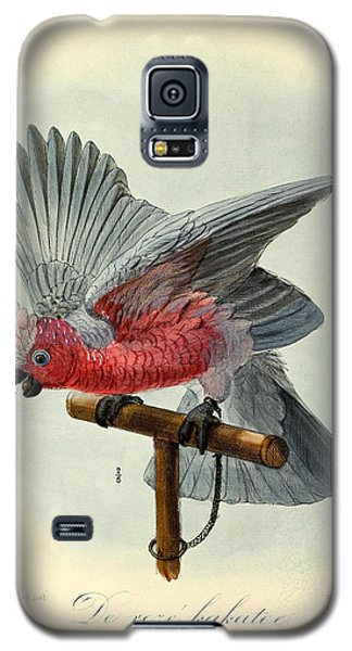 Rose Cockatoo Galaxy S5 Case by J G Keulemans