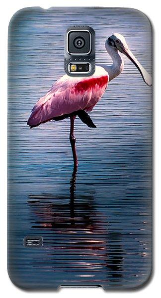 Roseate Spoonbill Galaxy S5 Case by Karen Wiles