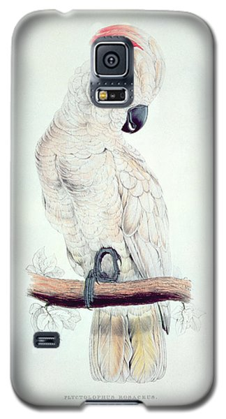 Salmon Crested Cockatoo Galaxy S5 Case by Edward Lear