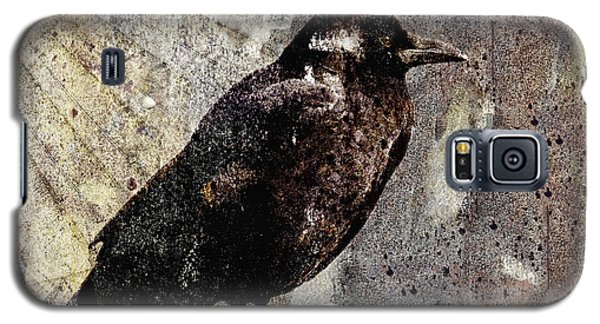 Same Crow Different Day Galaxy S5 Case by Carol Leigh