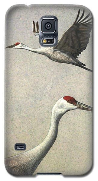 Sandhill Cranes Galaxy S5 Case by James W Johnson