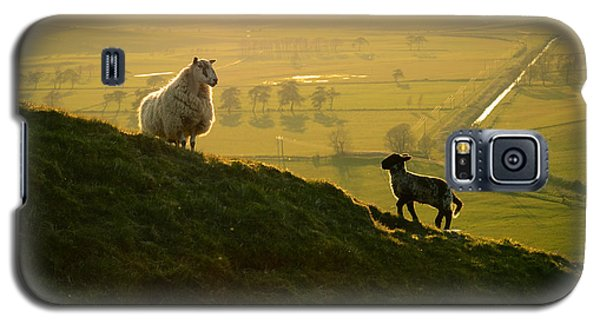 Scottish Sheep And Lamb Galaxy S5 Case by Mr Doomits