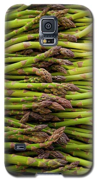 Scotts Asparagus Farm, Marlborough Galaxy S5 Case by Douglas Peebles