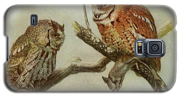 Screech Owls Galaxy S5 Case by Louis Agassiz Fuertes