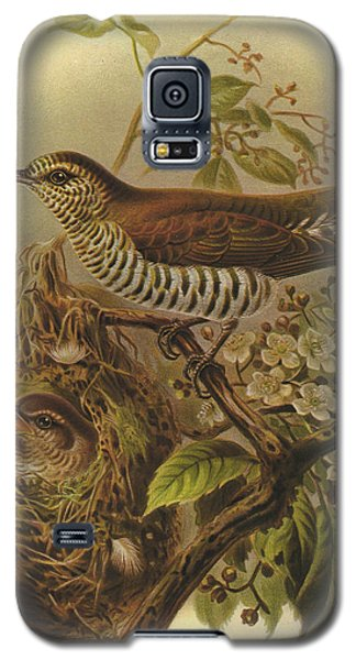 Shining Cuckoo Galaxy S5 Case by J G Keulemans