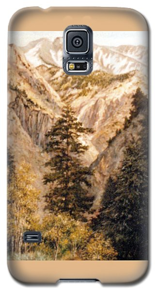 Shirley Temple Mine Galaxy S5 Case by Donna Tucker