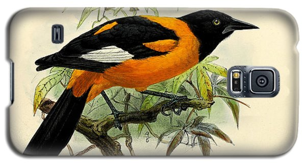 Small Oriole Galaxy S5 Case by J G Keulemans
