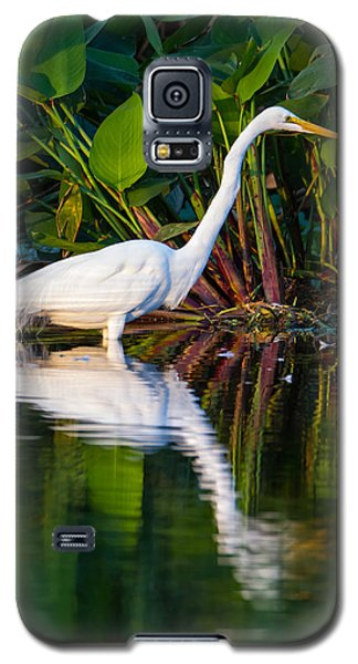 Bird Galaxy S5 Cases - Snow Egret and Its Reflection Galaxy S5 Case by Andres Leon