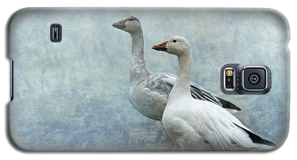 Snow Geese Galaxy S5 Case by Angie Vogel