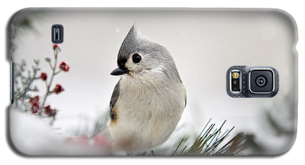 Snow White Tufted Titmouse Galaxy S5 Case by Christina Rollo