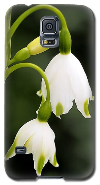 Green Galaxy S5 Cases - Snowbells in Spring Galaxy S5 Case by Rona Black