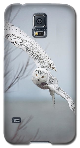 Snowy Owl In Flight Galaxy S5 Case by Carrie Ann Grippo-Pike