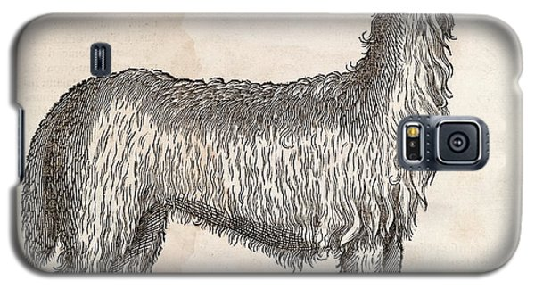 South American Camelid Galaxy S5 Case by Middle Temple Library