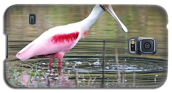 Spoonbill In The Pond Galaxy S5 Case by Carol Groenen