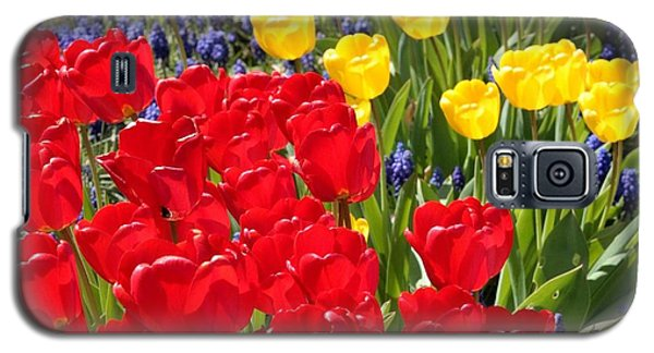 Spring Sunshine Galaxy S5 Case by Carol Groenen