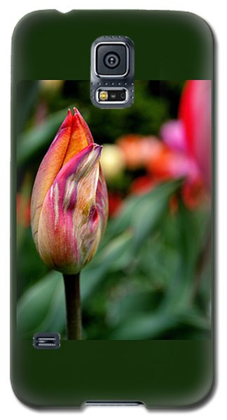 Green Galaxy S5 Cases - Standout Galaxy S5 Case by Rona Black