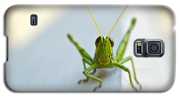 Staring At Me Galaxy S5 Case by Shelby  Young