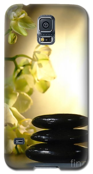 Stone Cairn And Orchids Galaxy S5 Case by Olivier Le Queinec