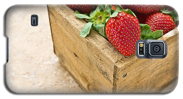 Strawberries Galaxy S5 Case by Edward Fielding