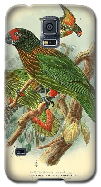 Streaked Lory Galaxy S5 Case by J G Keulemans
