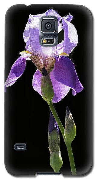 Sun-drenched Iris Galaxy S5 Case by Rona Black