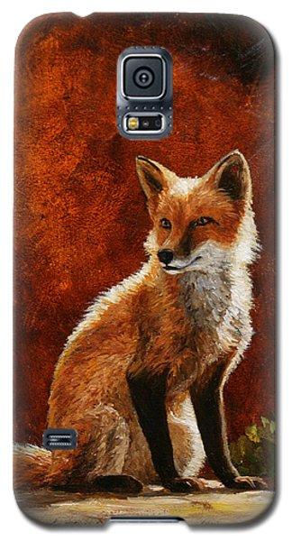 Sun Fox Galaxy S5 Case by Crista Forest