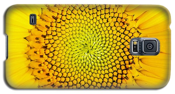 Sunflower  Galaxy S5 Case by Edward Fielding