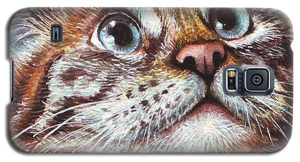 Animals Galaxy S5 Cases - Surprised Kitty Galaxy S5 Case by Olga Shvartsur