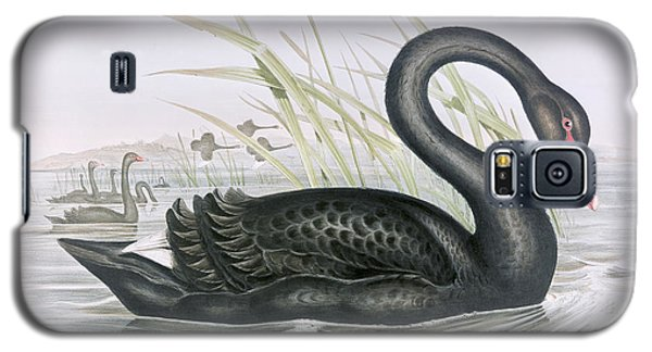The Black Swan Galaxy S5 Case by John Gould