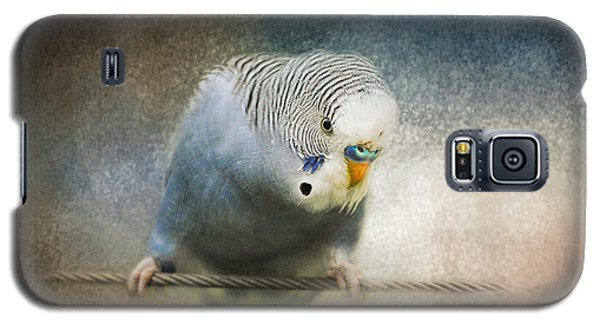 The Budgie Collection - Budgie 3 Galaxy S5 Case by Jai Johnson