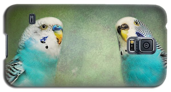 The Budgie Collection - Budgie Pair Galaxy S5 Case by Jai Johnson