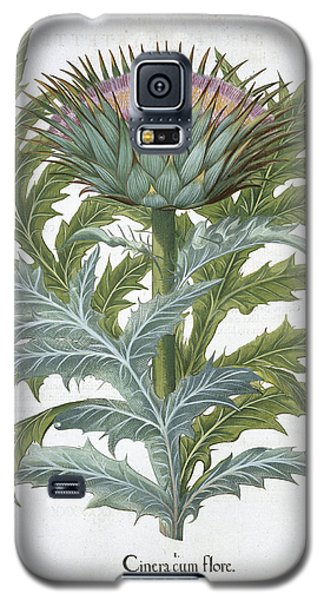 The Cardoon, From The Hortus Galaxy S5 Case by German School