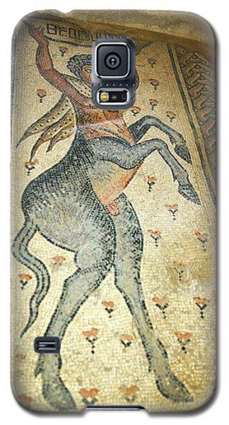 The Centaur Mosaic Galaxy S5 Case by Photostock-israel