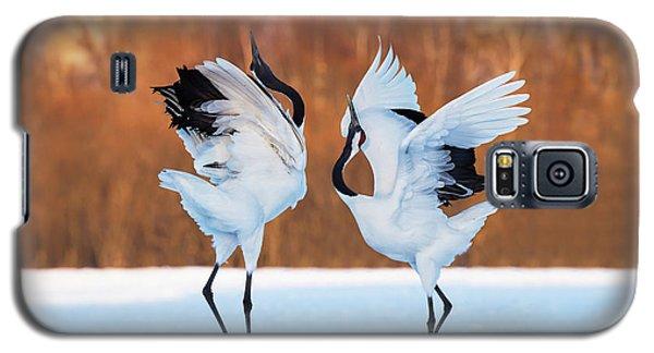 The Dance Of Love Galaxy S5 Case by C. Mei