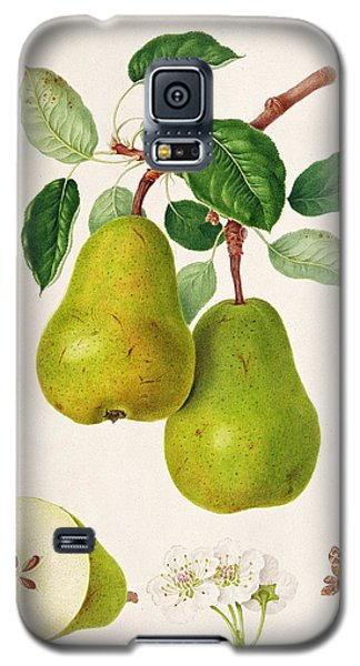 The D'auch Pear Galaxy S5 Case by William Hooker