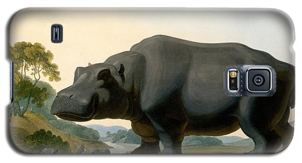 The Hippopotamus, 1804 Galaxy S5 Case by Samuel Daniell