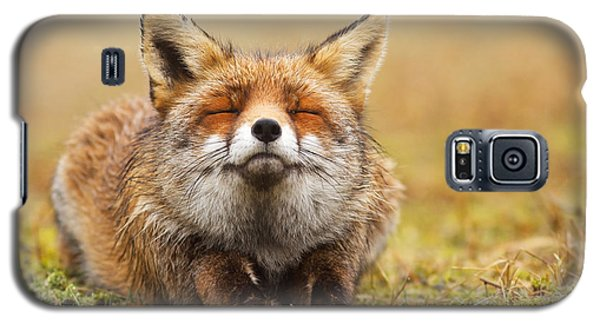 The Smiling Fox Galaxy S5 Case by Roeselien Raimond