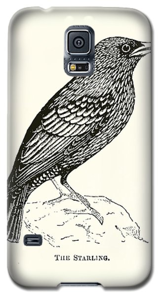 The Starling Galaxy S5 Case by English School