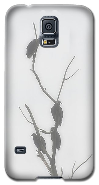 Their Waiting Four Black Vultures In Dead Tree Galaxy S5 Case by Chris Flees