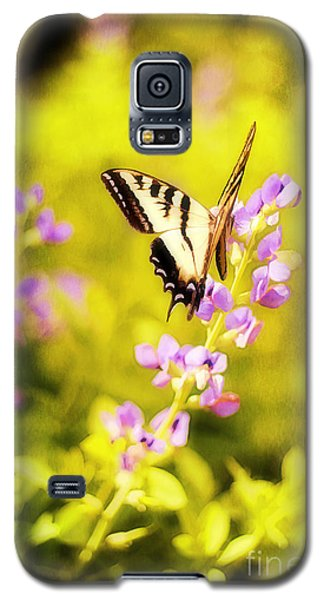 Summer Galaxy S5 Cases - Those Summer Dreams Galaxy S5 Case by Darren Fisher