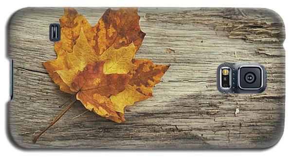 Three Leaves Galaxy S5 Case by Scott Norris