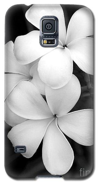 Three Plumeria Flowers In Black And White Galaxy S5 Case by Sabrina L Ryan