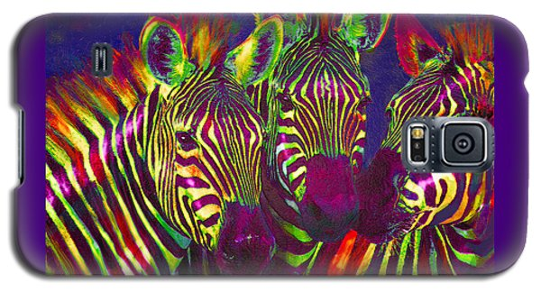 Three Rainbow Zebras Galaxy S5 Case by Jane Schnetlage