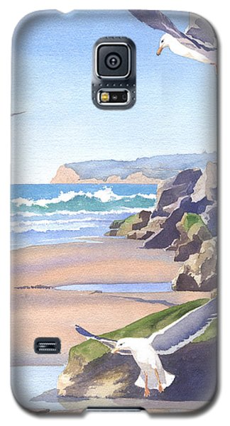 Three Seagulls At Coronado Beach Galaxy S5 Case by Mary Helmreich